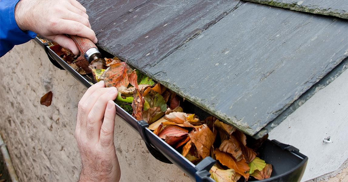 雨どい掃除 雨どい交換  雨どいはゴミが詰まりやすい場所です。定期的に掃除をして長持ちさせましょう。